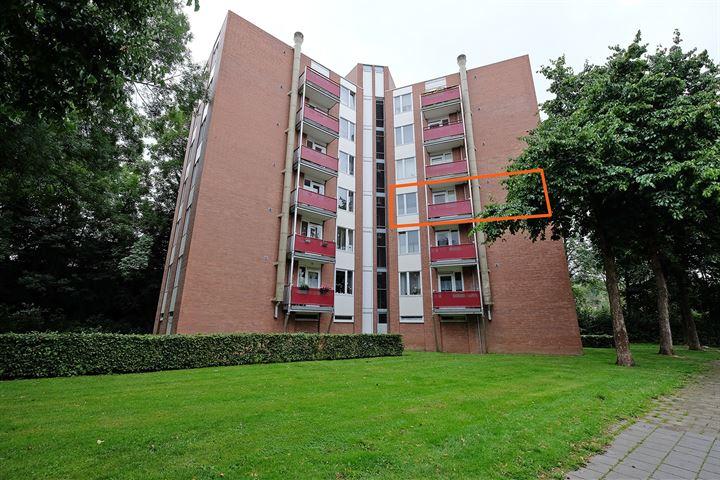 Berghofstraat 38