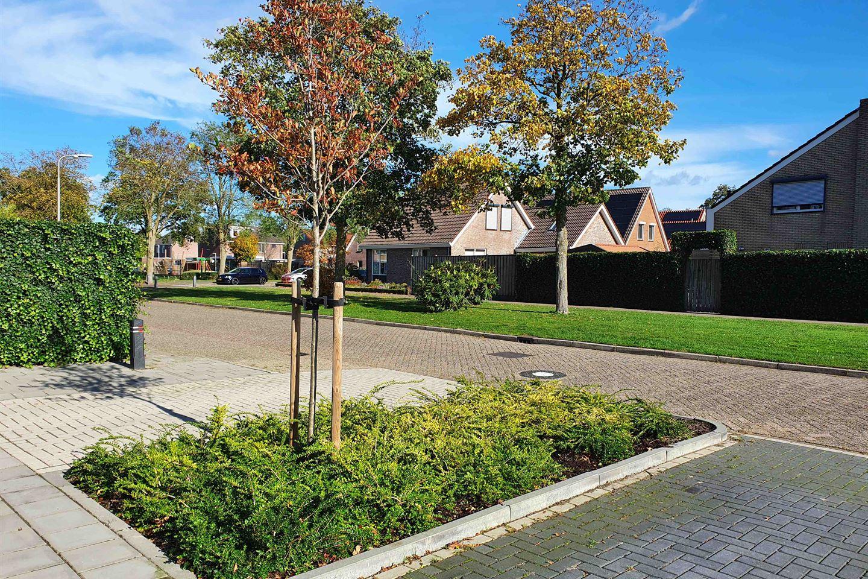 Bekijk foto 3 van Meidoornstraat 29