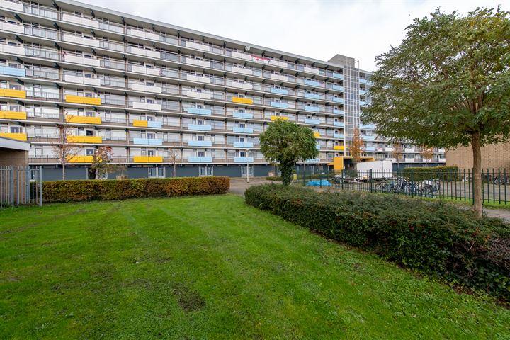 Briljantstraat 196