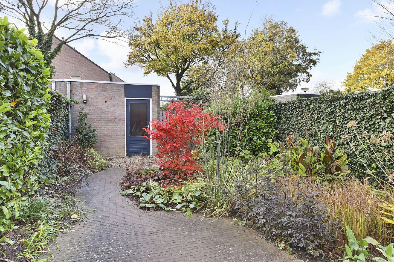 Bekijk foto 5 van Ranonkelhof 15