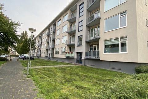 Bekijk foto 3 van Jan den Haenstraat 78