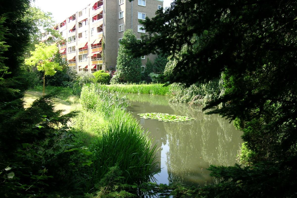 Bekijk foto 1 van Laan van Rijnwijk 1 A22