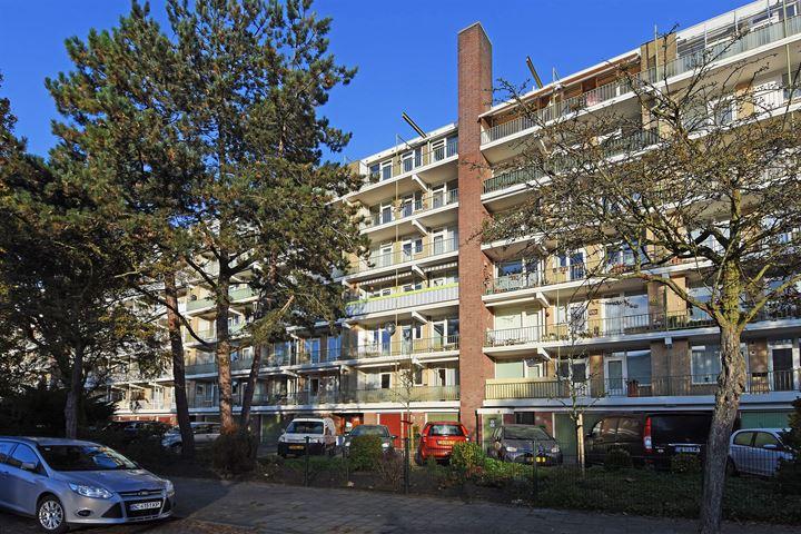Cornelie van Zantenstraat 154