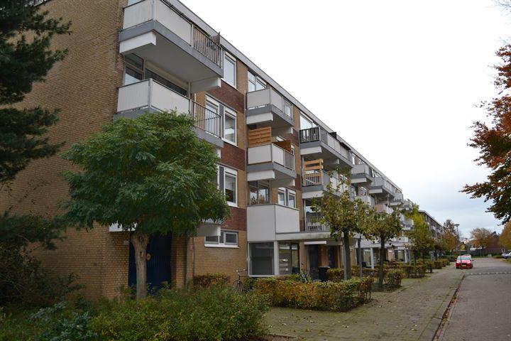 Narcissenstraat 96
