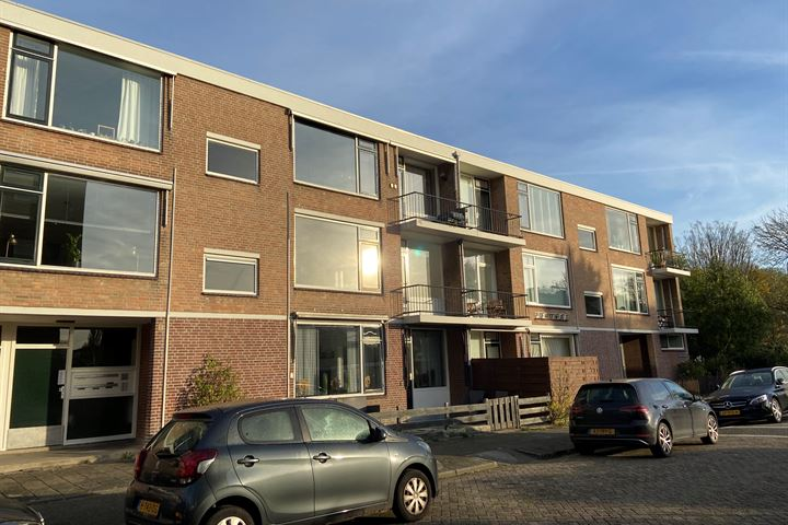 Pieter de Hoochstraat 64