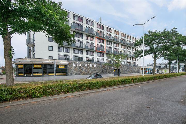 Treubstraat 160