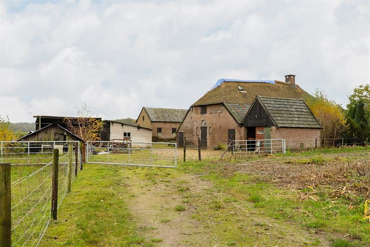 Burggraaf 32