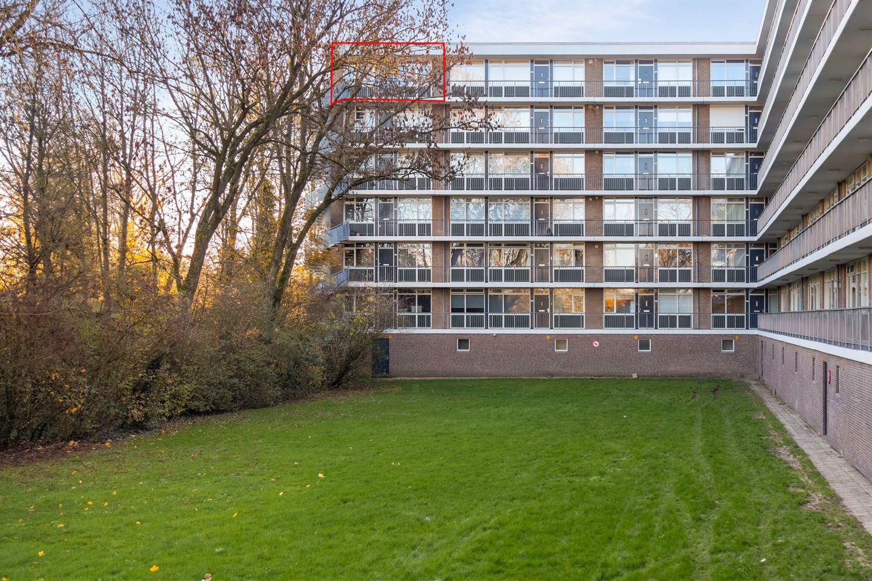Bekijk foto 1 van Wijenburglaan 169