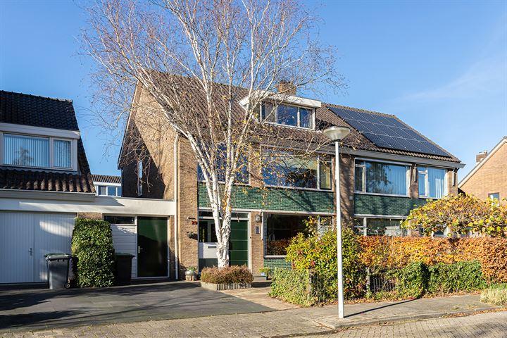 Jan van Scorelstraat 29