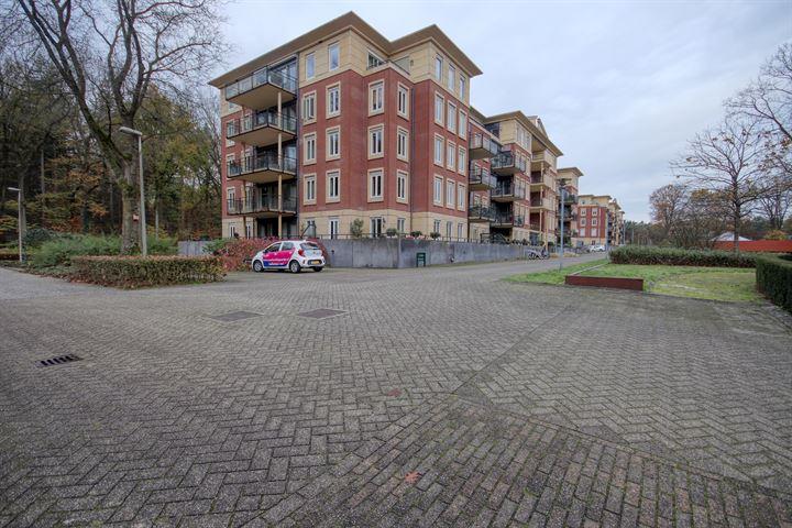 Rhenendael 37