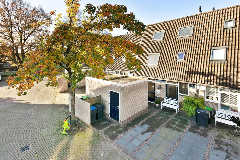 Bekijk foto 1 van Hoefbladmeen 13