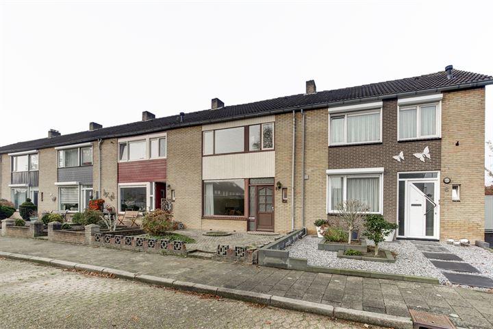 Wingerdstraat 8
