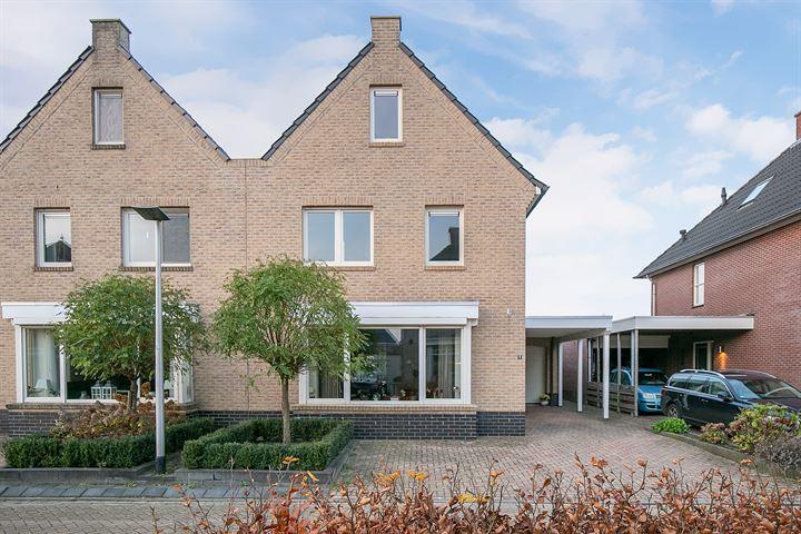 Abeelhout 6