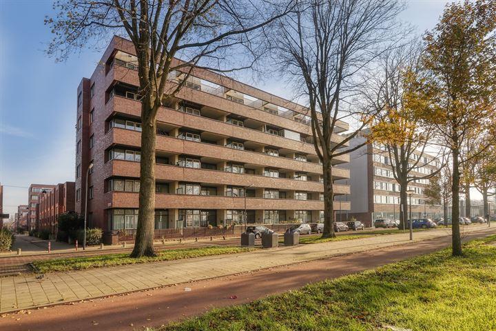 Johan Hofmanstraat 312