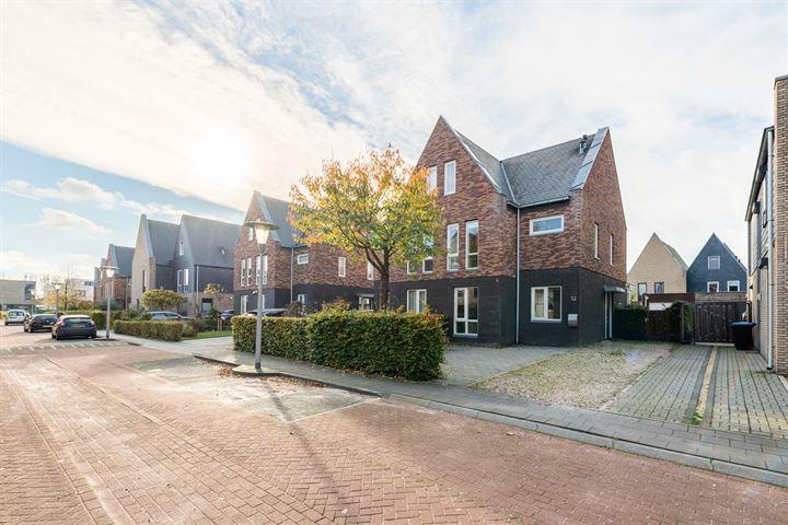 Timmerhout 12