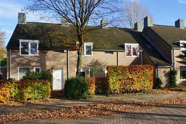 Schipbeek 9