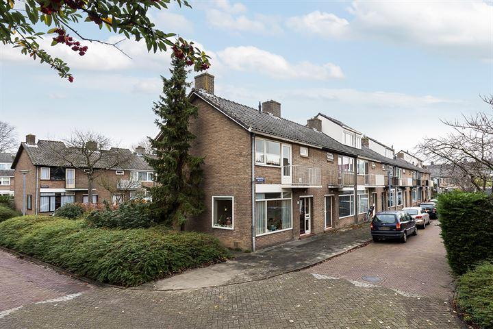 Roskamstraat 31