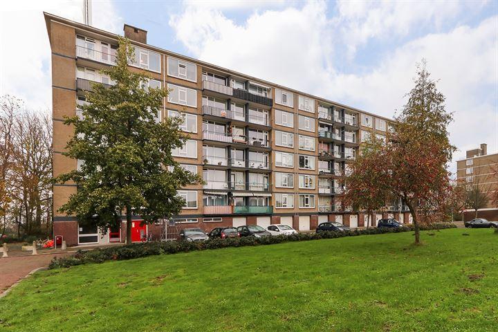 Schipbeekstraat 174