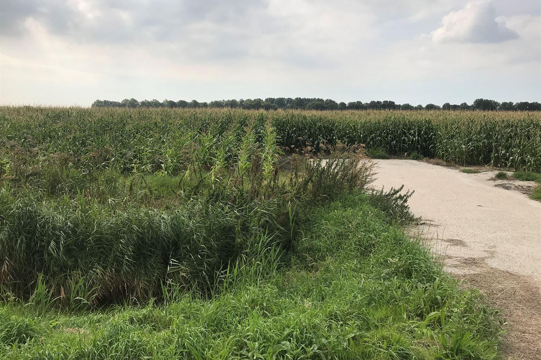 Bekijk foto 2 van Veertweg