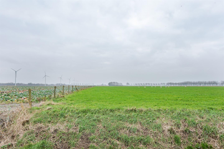 Bekijk foto 4 van Kalverdijk 37