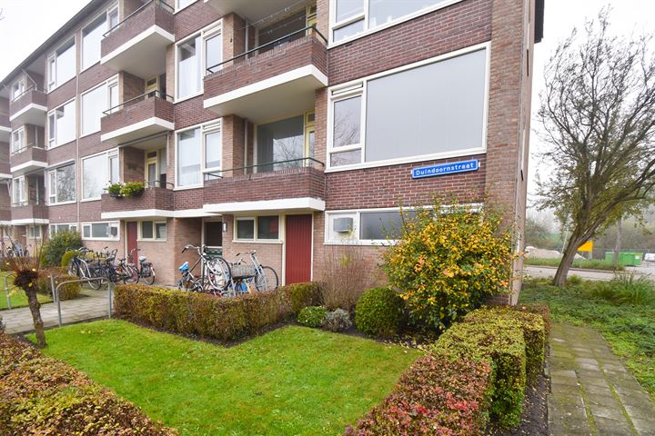 Duindoornstraat 3