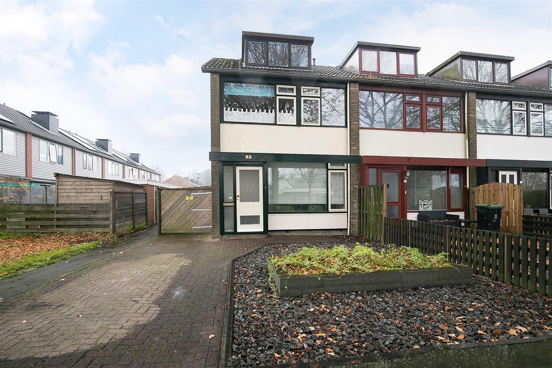 Bekijk foto 1 van van Limburg Stirumlaan 65