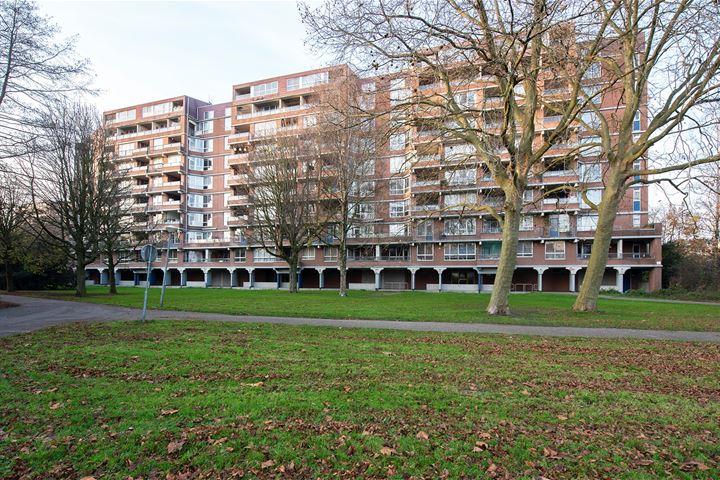 Leksmondhof 155 + PP