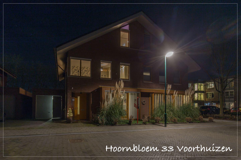 Bekijk foto 1 van Hoornbloem 33
