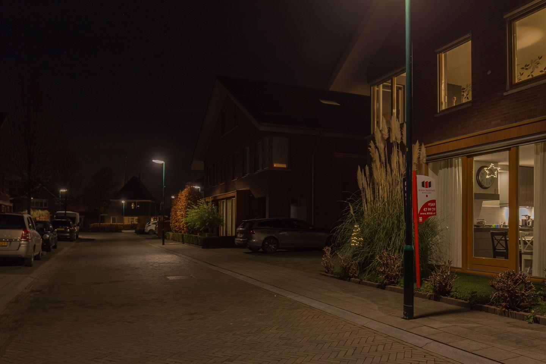 Bekijk foto 4 van Hoornbloem 33