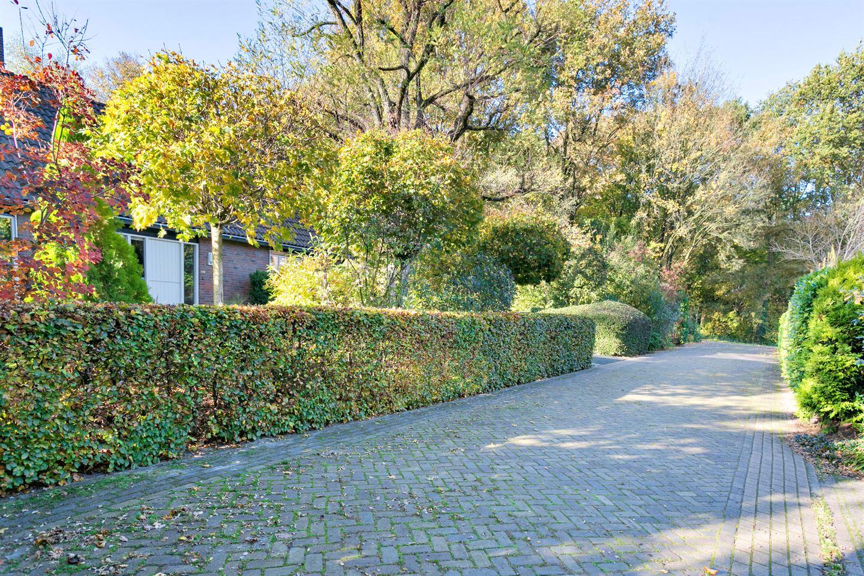 Bekijk foto 4 van Borgerspark 45