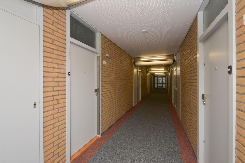 Bekijk foto 3 van Aïdaplein 231