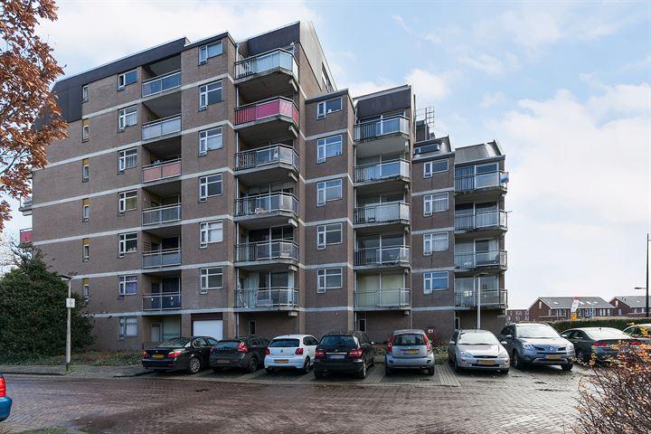 Steendijk 75