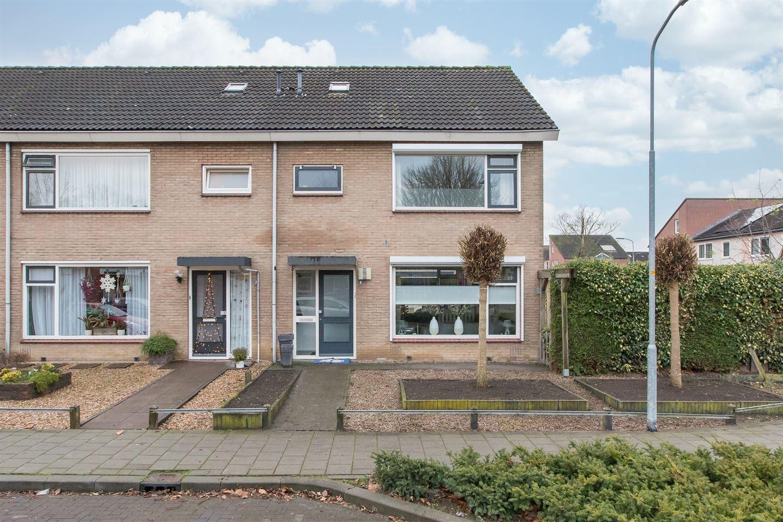 Bekijk foto 1 van Johan de Wittstraat 9