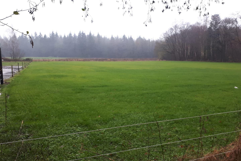 Bekijk foto 1 van Noordergrensweg 59