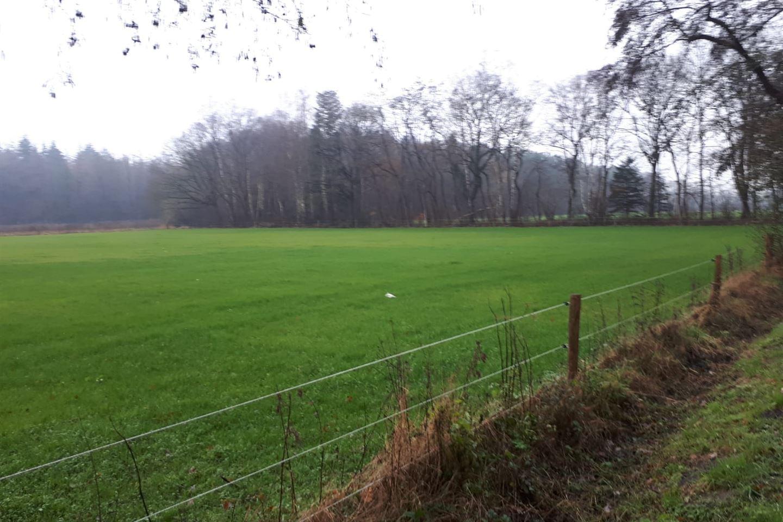 Bekijk foto 3 van Noordergrensweg 59