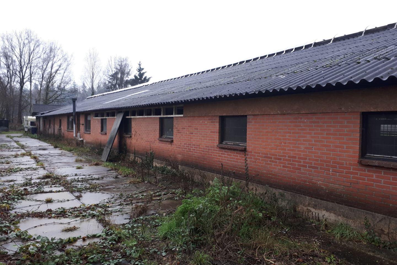 Bekijk foto 5 van Noordergrensweg 59