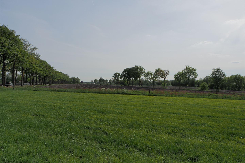 Bekijk foto 2 van Ruinerweide