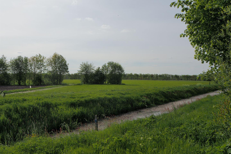 Bekijk foto 3 van Ruinerweide