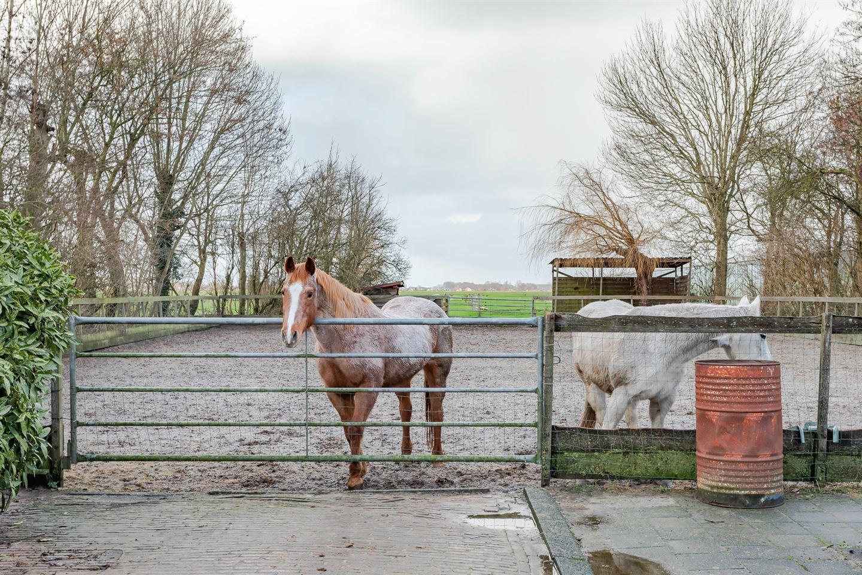 Bekijk foto 3 van Wogmeer 17
