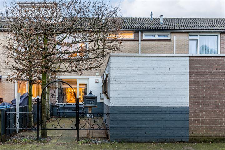 Drijvershof 38
