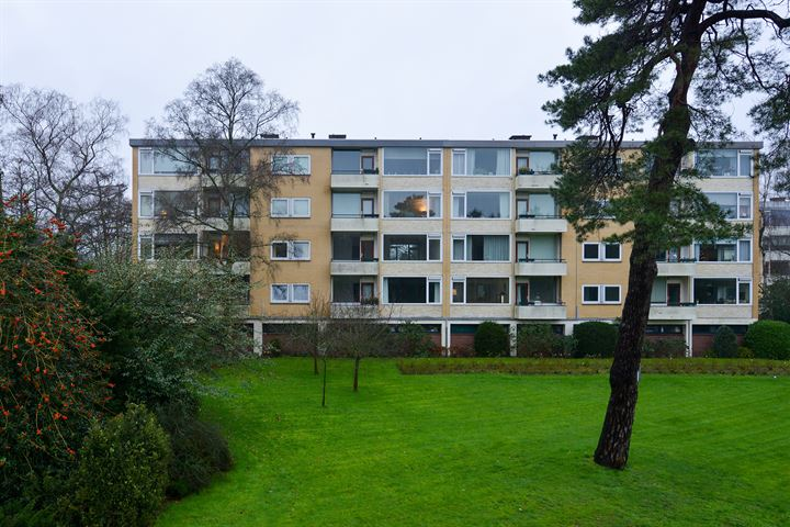 Merelhof 103