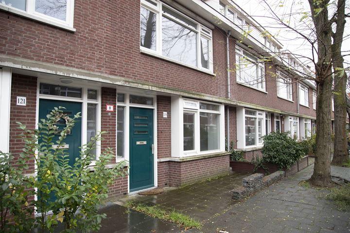 Soesterbergstraat 119