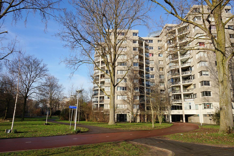 Bekijk foto 1 van Groenhoven 219