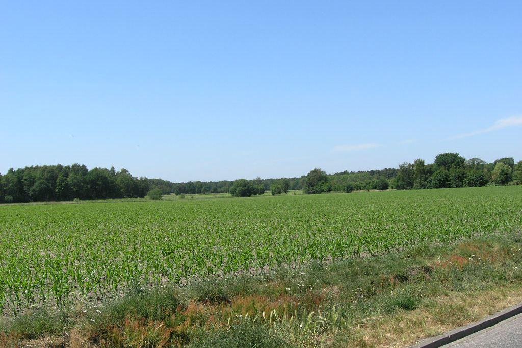 Bekijk foto 3 van Keersopperweg 24