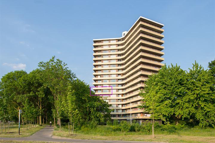 Albardaweg 67