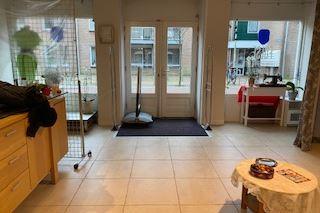 Bekijk foto 4 van Plantsoenstraat 33