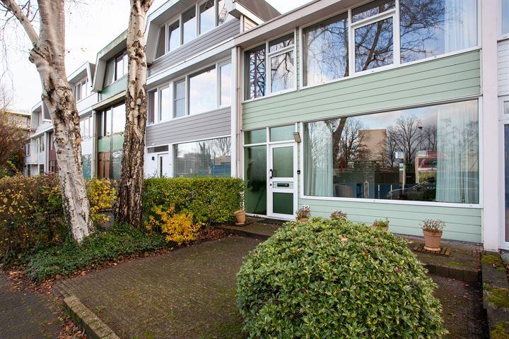 Biesbosch 32
