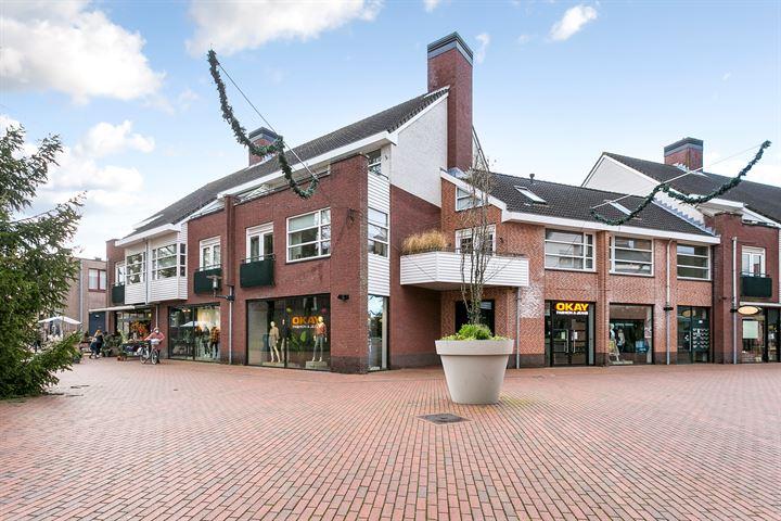 Brinkhorst 46