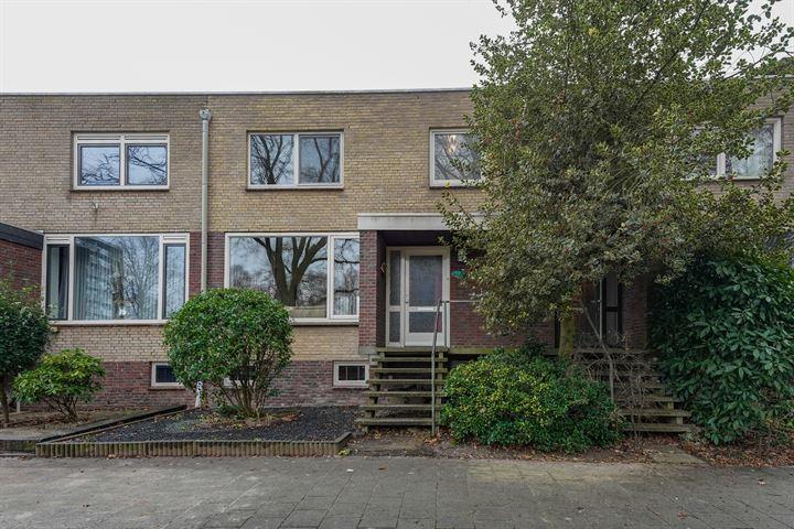 Meijhorst 9204