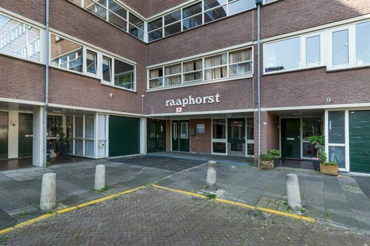 Raaphorst 29